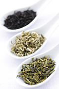 Spoons Posters - Assortment of dry tea leaves in spoons Poster by Elena Elisseeva