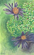Aster  Painting Framed Prints - Aster Framed Print by Acqu Art