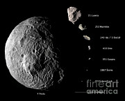 Comparison Photo Framed Prints - Asteroid Size Comparison With Vesta Framed Print by NASA/Science Source