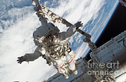 Endeavour Prints - Astronaut Anchored To Canadarm2 Print by Nasa