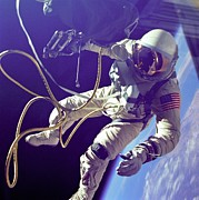 Zero Gravity Posters - Astronaut Edward White During His 23 Poster by Everett
