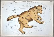 Major Framed Prints - Astronomy: Ursa Major Framed Print by Granger