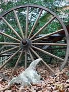 Wagon Photos - At Rest by Joy Tudor