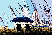 Sea Oats Prints - At the beach Print by David Lee Thompson