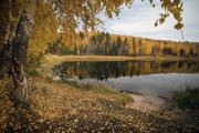 Photos Of Autumn Prints - At the lake Print by Yurii Karpov