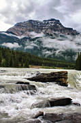 Alberta Water Falls Prints - Athabasca Falls and Kerkeslin Mountain Print by Teresa Zieba