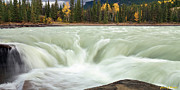 Alberta Water Falls Framed Prints - Athabasca River Framed Print by Frank Wicker
