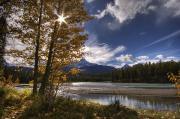 Athabasca River With Mount Fryatt Print by Dan Jurak