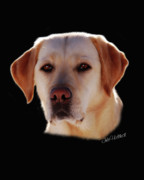 Dogs Digital Art Posters - Athena Poster by Julie L Hoddinott