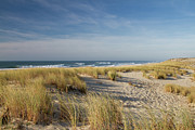 Sand Dune Photos - Atlantic Coast And Cap Ferret by I hope you