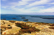 Stephen Janko - Atop Cadillac Mountain
