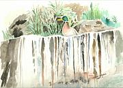 Mallard Ducks Paintings - Atop The Waterfall by Arline Wagner