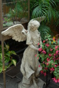 Garden Ornaments Framed Prints - Atrium Angel Framed Print by Joyce StJames