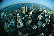City Streets Prints - Auckland Skyline As Seen From Sky Tower Print by Todd Gipstein