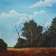 Sharon Steinhaus - Audley Raod Meadow