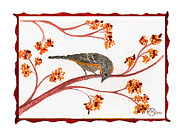 Beardedladygreetings Tapestries - Textiles Prints - Audubon Warbler Print by Alexandra  Sanders