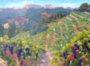 California Vineyard Paintings - August Grapevines by Deborah Cushman