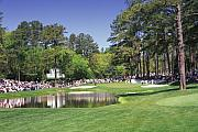 Golf Photos Posters - Augusta National Golf Club Hole 16 Redbud Poster by Phil Reich