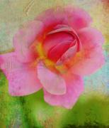 Altered Photograph Posters - Aunt Loris Pink Rose Poster by Danielle Miller