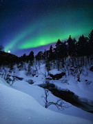 Nordic Countries Prints - Aurora And A Full Moon Over Tennevik Print by Arild Heitmann