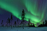 Winter Night Posters - Aurora Borealis  Northern Lights Sweden Poster by Dave Moorhouse