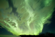 Alberta Photos - Aurora Borealis Over A Snowy Field by Zoltan Kenwell