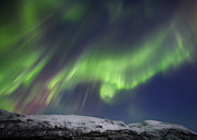 Troms County Prints - Aurora Borealis Over Blafjellet Print by Arild Heitmann