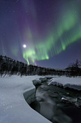 Nordic Countries Prints - Aurora Borealis Over The Blafjellelva Print by Arild Heitmann