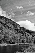 Lake Placid Ny Photo Posters - AuSable River 5449 Poster by Guy Whiteley