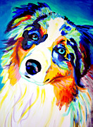Dawgart Paintings - Aussie - Moonie by Alicia VanNoy Call