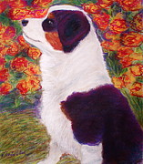 Border Pastels - Aussie Pup by D Renee Wilson