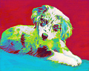 Pup Digital Art Metal Prints - Aussie Puppy Metal Print by Jane Schnetlage