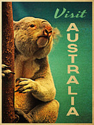 Koala Digital Art Prints - Australia Koala Print by Vintage Poster Designs