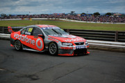Australian Ford Photos - Australian Racing Car Driver Jamie Whincup by Cheryl Hall
