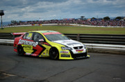 Australian Ford Photos - Australian Racing Car Driver Russell Ingall by Cheryl Hall