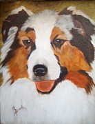Dog Portrait Paintings - Australian Shephard by Maureen Diehl