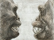 Chimpanzee Photo Posters - Australopithecus And Chimpanzee Teeth Poster by Kennis And Kennismsf
