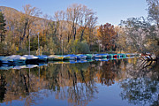Autumn Foliage Photo Posters - autum at the Lake Maggiore Poster by Joana Kruse