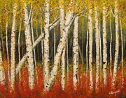 Cynthia Langford - Autum Birch