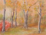 Woods Pastels - Autum Somewhere In The Forest by Sandra Valentini