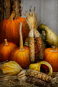 Autumn Scene Posters - Autumn - Gourd - Pumpkins and Maize  Poster by Mike Savad