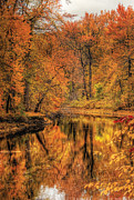 Miksavad Prints - Autumn - Landscape - Autumn in New Jersey Print by Mike Savad