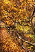 Yellows Prints - Autumn - Landscape - Country road side Print by Mike Savad