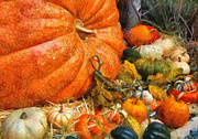Harvest Art Prints - Autumn - Pumpkin - All of my relatives Print by Mike Savad