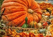 Autumn - Pumpkin - Great Gourds Print by Mike Savad