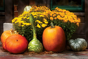 Orange Flowers Prints - Autumn - Pumpkin - The Gangs all here Print by Mike Savad