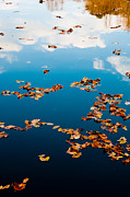 Lagoon Prints - Autumn - 3 Print by Okan YILMAZ