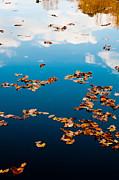 Autumn - 3 Print by Okan YILMAZ
