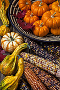 Baskets Photo Framed Prints - Autumn abundance Framed Print by Garry Gay