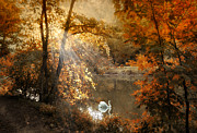 Autumn Landscape Digital Art - Autumn Afterglow by Jessica Jenney